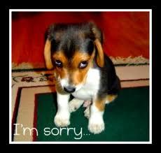 sorry4